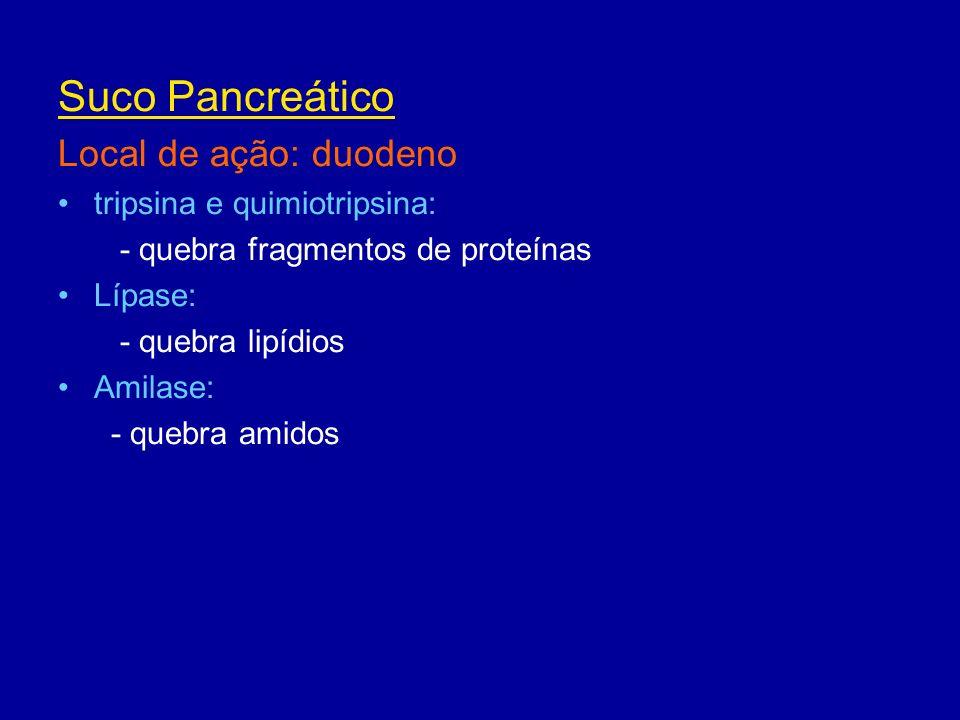 Suco Pancreático Local de ação: duodeno tripsina e quimiotripsina: - quebra fragmentos de proteínas Lípase: - quebra lipídios Amilase: - quebra amidos