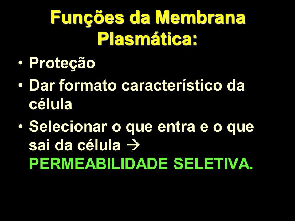 Funções da Membrana Plasmática: Proteção Dar formato característico da célula Selecionar o que entra e o que sai da célula PERMEABILIDADE SELETIVA.
