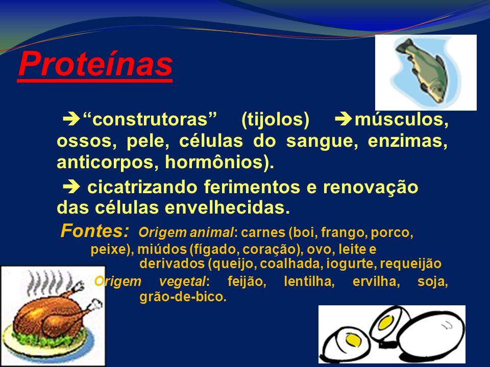 Proteínas construtoras (tijolos) músculos, ossos, pele, células do sangue, enzimas, anticorpos, hormônios). cicatrizando ferimentos e renovação das cé