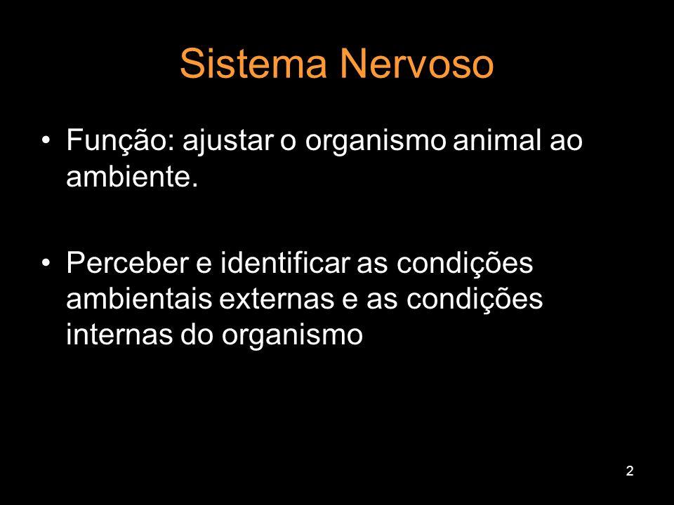 1 FISIOLOGIA DO SISTEMA NERVOSO HUMANO Controle do funcionamento do ser humano através de impulsos elétricos Prof.César Lima