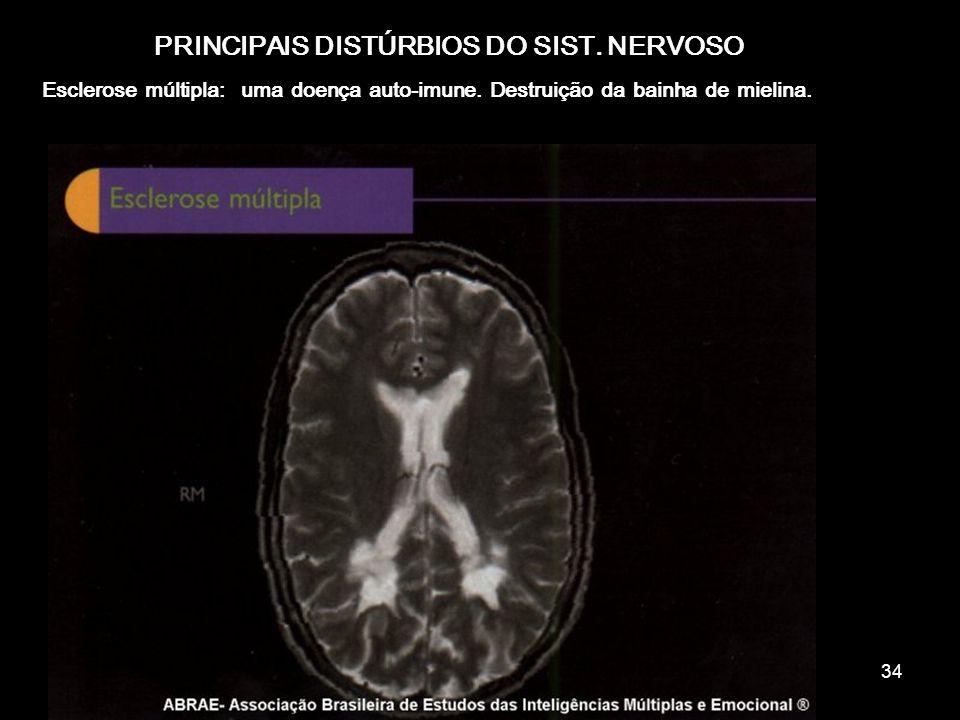 33 Funções da neuróglia Sustentação do tecido Produção de mielina Remoção de excretas Fornecimento de substancias nutritivas aos neurônios Fagocitose