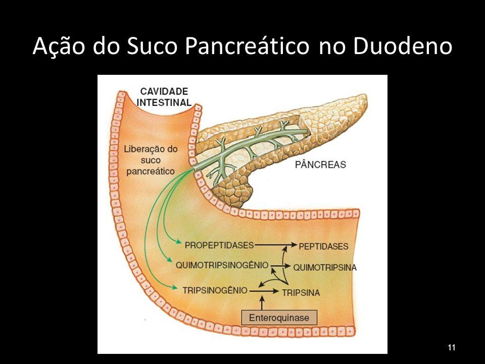 Ação do Suco Pancreático no Duodeno 11