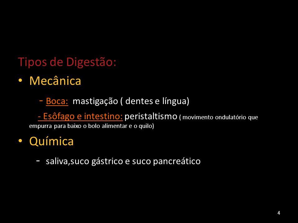 Tipos de Digestão: Mecânica - Boca: mastigação ( dentes e língua) - Esôfago e intestino: peristaltismo ( movimento ondulatório que empurra para baixo