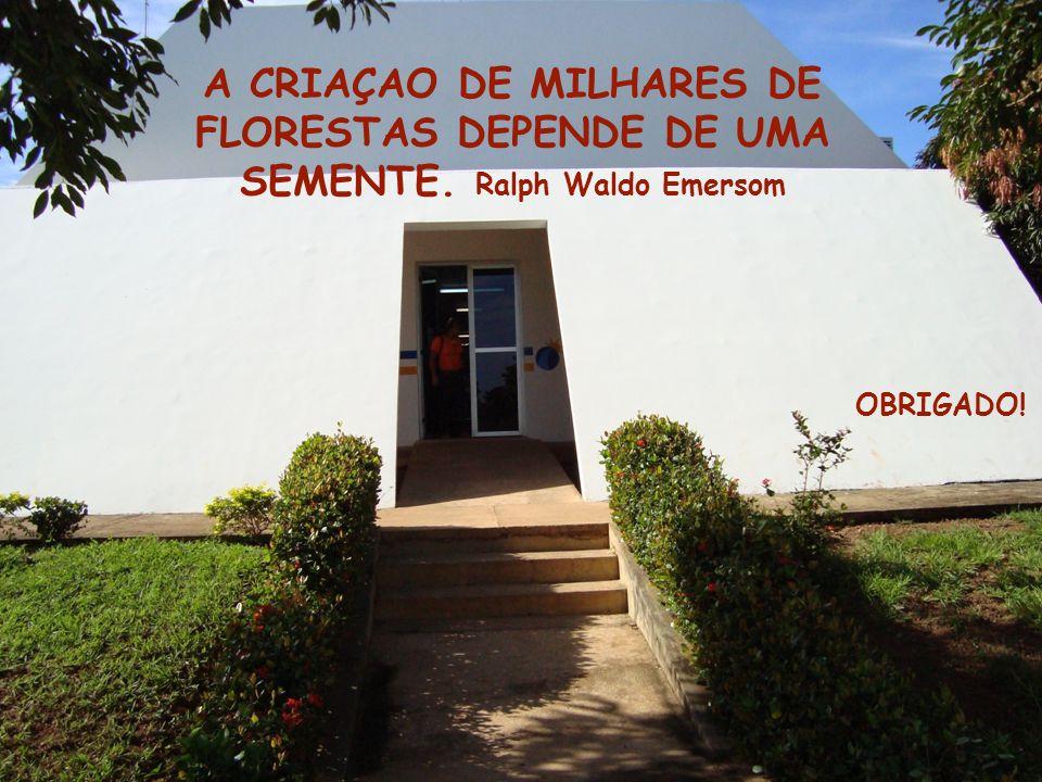 A CRIAÇAO DE MILHARES DE FLORESTAS DEPENDE DE UMA SEMENTE. Ralph Waldo Emersom OBRIGADO!