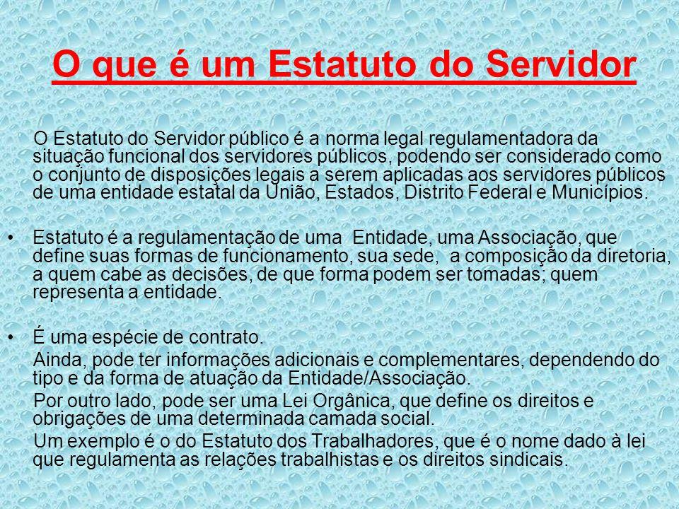 O que é um Estatuto do Servidor O Estatuto do Servidor público é a norma legal regulamentadora da situação funcional dos servidores públicos, podendo