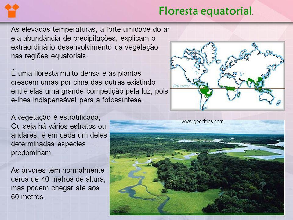 As elevadas temperaturas, a forte umidade do ar e a abundância de precipitações, explicam o extraordinário desenvolvimento da vegetação nas regiões eq