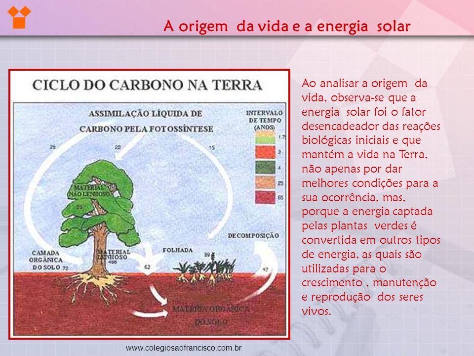 Ao analisar a origem da vida, observa-se que a energia solar foi o fator desencadeador das reações biológicas iniciais e que mantém a vida na Terra, n