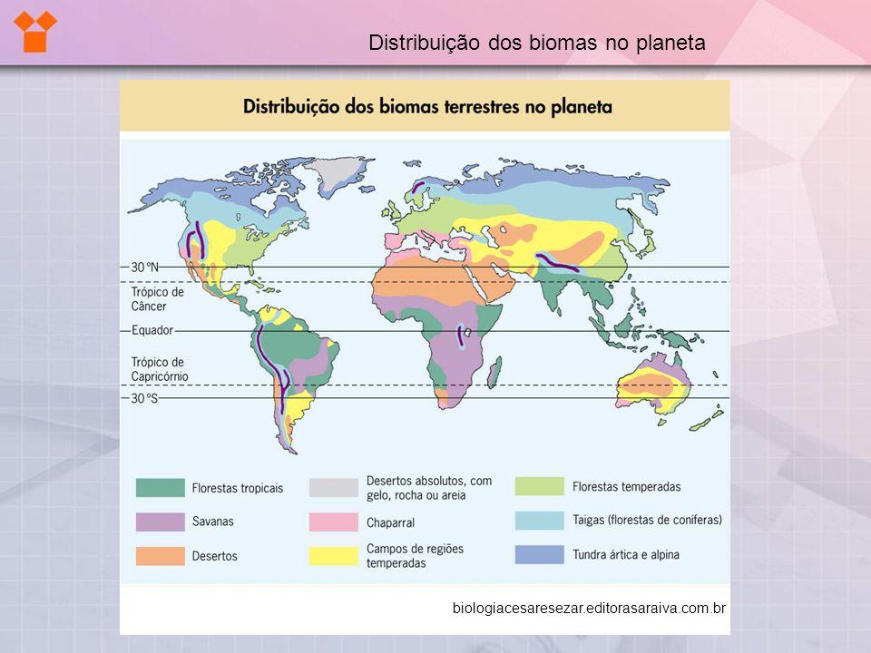Distribuição dos biomas no planeta biologiacesaresezar.editorasaraiva.com.br