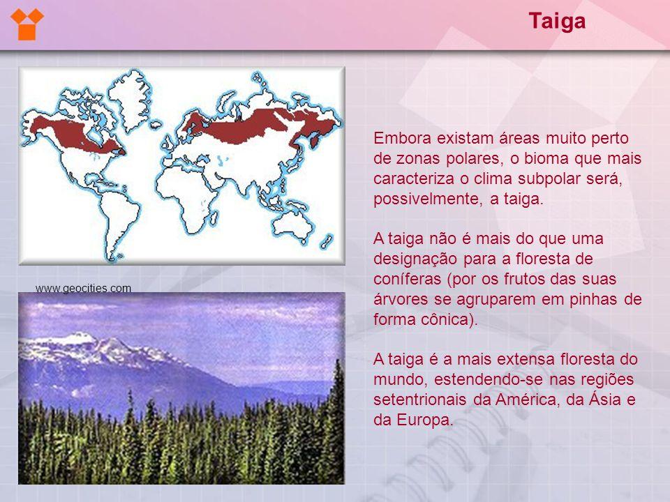 Embora existam áreas muito perto de zonas polares, o bioma que mais caracteriza o clima subpolar será, possivelmente, a taiga. A taiga não é mais do q