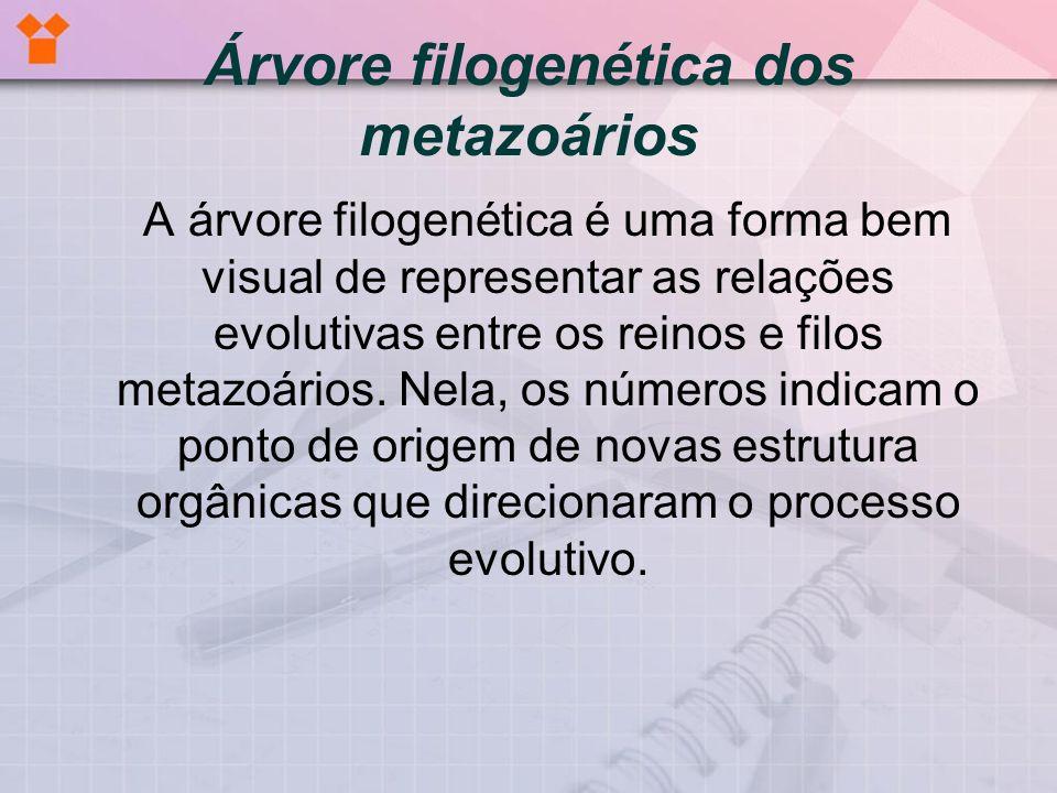 (paginas.terra.com.br/educacao/sariego/organi5.jpg) 0 - DNA e RNA.