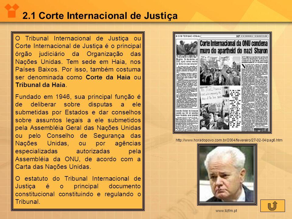 2.1 Corte Internacional de Justiça O Tribunal Internacional de Justiça ou Corte Internacional de Justiça é o principal órgão judiciário da Organização