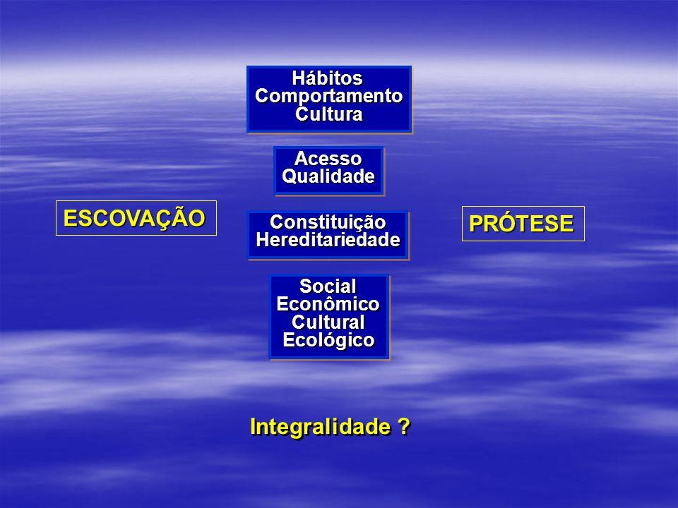 ESCOVAÇÃO ConstituiçãoHereditariedadeConstituiçãoHereditariedade HábitosComportamentoCulturaHábitosComportamentoCultura AcessoQualidadeAcessoQualidade