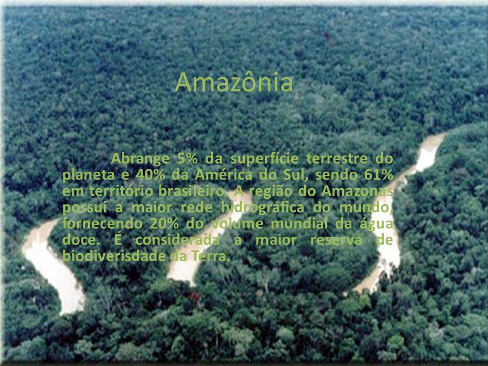 Amazônia Abrange 5% da superfície terrestre do planeta e 40% da América do Sul, sendo 61% em território brasileiro. A região do Amazonas possui a maio