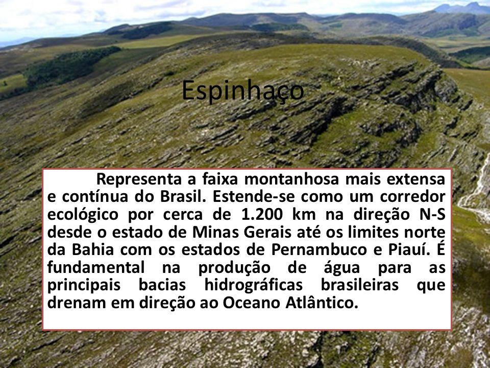 Espinhaço Representa a faixa montanhosa mais extensa e contínua do Brasil. Estende-se como um corredor ecológico por cerca de 1.200 km na direção N-S