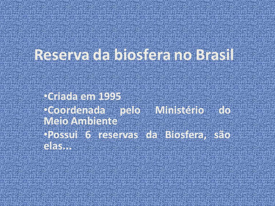 Referências Bibliográficas Disponível em: http://pt.wikipedia.org/wiki/Reserva_da_biosfer ahttp://pt.wikipedia.org/wiki/Reserva_da_biosfer a Acesso em: 30 de mar.