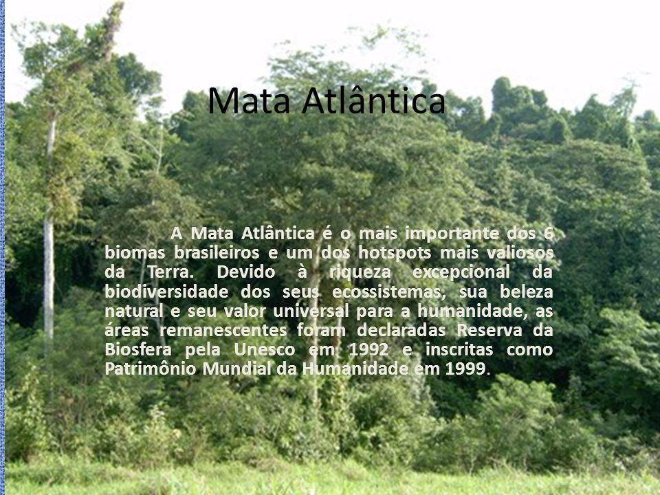 Observação: A Reserva da Biosfera do Cinturão Verde da Cidade de São Paulo é parte integrante da Reserva da Biosfera Mata Atlântica no Estado de São Paulo.