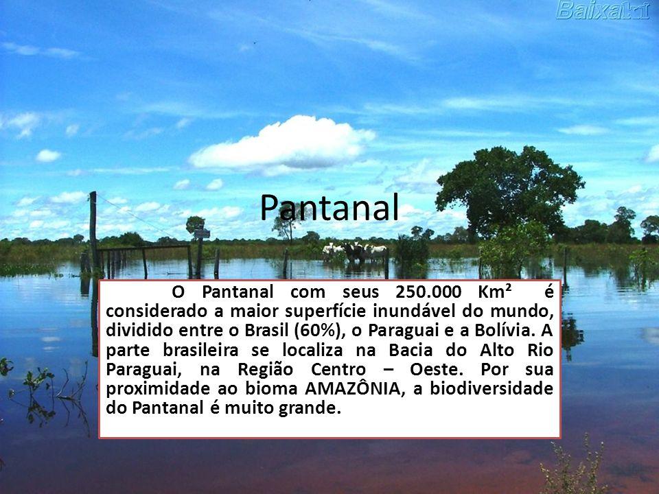 Pantanal O Pantanal com seus 250.000 Km² é considerado a maior superfície inundável do mundo, dividido entre o Brasil (60%), o Paraguai e a Bolívia. A