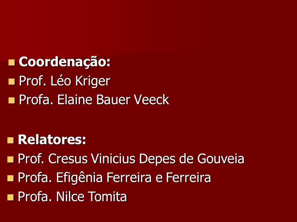 Coordenação: Coordenação: Prof. Léo Kriger Prof. Léo Kriger Profa. Elaine Bauer Veeck Profa. Elaine Bauer Veeck Relatores: Relatores: Prof. Cresus Vin