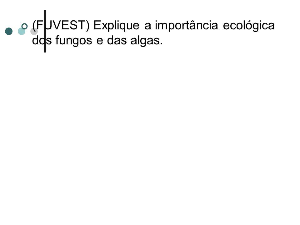 (FUVEST) Explique a importância ecológica dos fungos e das algas.