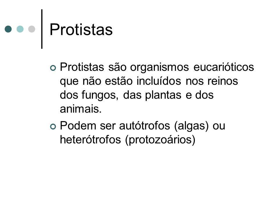 Protistas são organismos eucarióticos que não estão incluídos nos reinos dos fungos, das plantas e dos animais.
