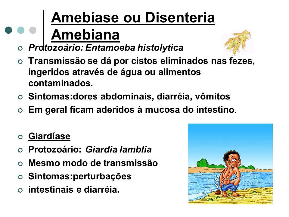 Amebíase ou Disenteria Amebiana Protozoário: Entamoeba histolytica Transmissão se dá por cistos eliminados nas fezes, ingeridos através de água ou alimentos contaminados.