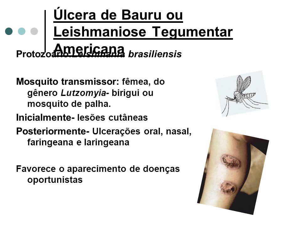 Úlcera de Bauru ou Leishmaniose Tegumentar Americana Protozoário:Leishmania brasiliensis Mosquito transmissor: fêmea, do gênero Lutzomyia- birigui ou mosquito de palha.