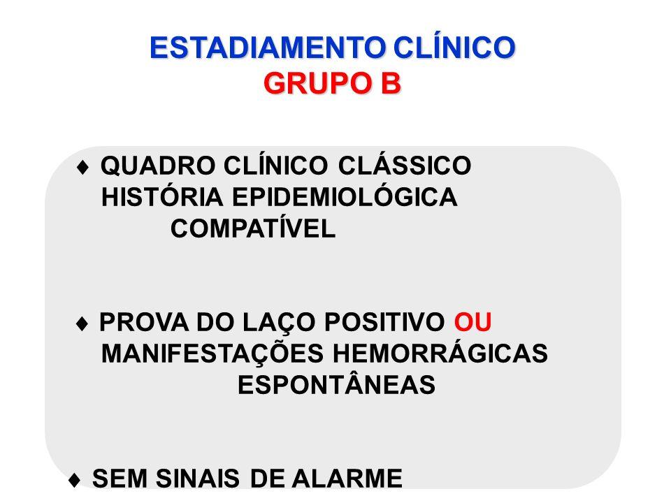 ESTADIAMENTO CLÍNICO GRUPO B QUADRO CLÍNICO CLÁSSICO HISTÓRIA EPIDEMIOLÓGICA COMPATÍVEL PROVA DO LAÇO POSITIVO OU MANIFESTAÇÕES HEMORRÁGICAS ESPONTÂNE