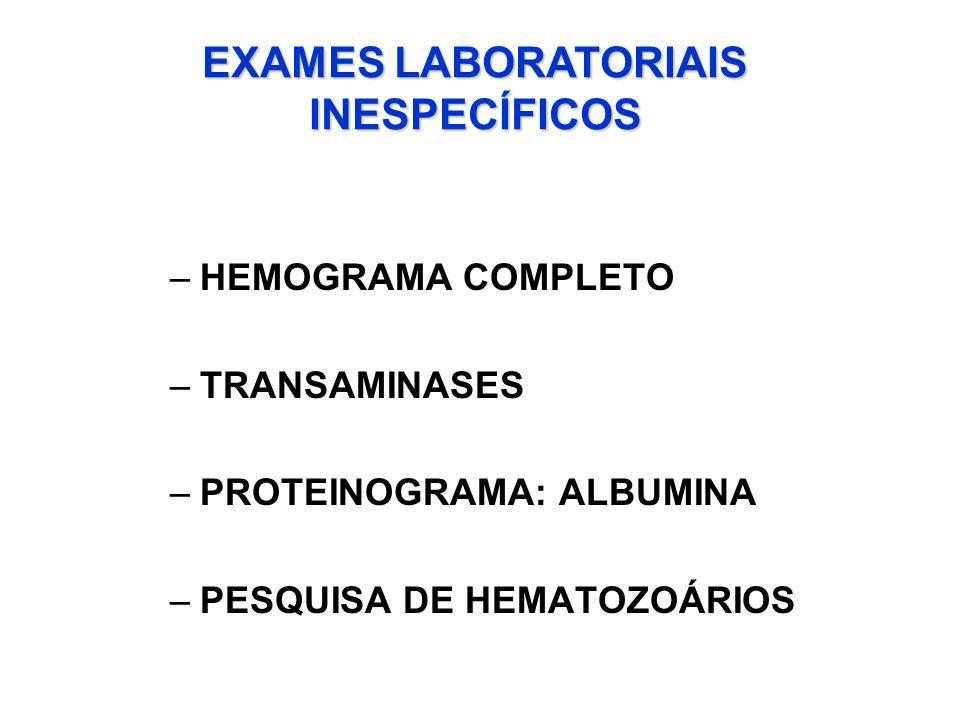 EXAMES LABORATORIAIS INESPECÍFICOS –HEMOGRAMA COMPLETO –TRANSAMINASES –PROTEINOGRAMA: ALBUMINA –PESQUISA DE HEMATOZOÁRIOS