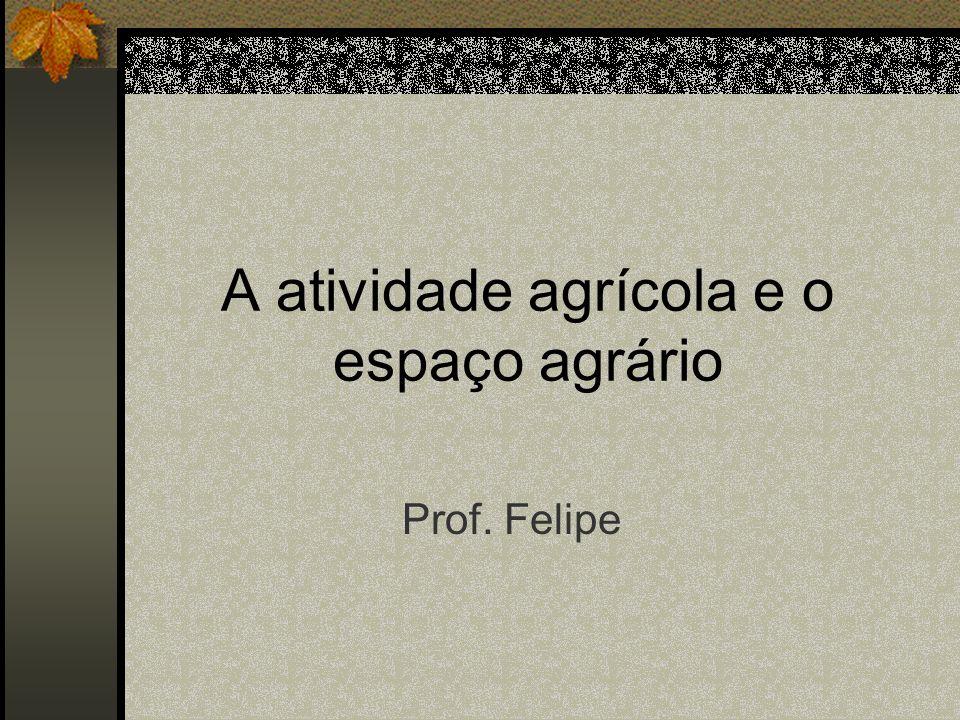 A atividade agrícola e o espaço agrário Prof. Felipe