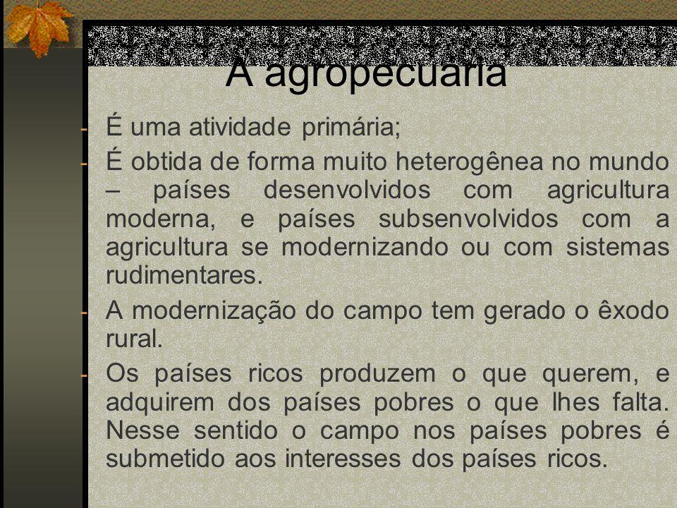 A agropecuária - É uma atividade primária; - É obtida de forma muito heterogênea no mundo – países desenvolvidos com agricultura moderna, e países sub