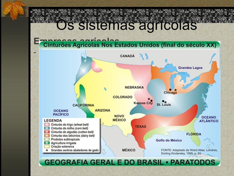 Os sistemas agrícolas Empresas agrícolas - É destacada nos EUA e na UE; - Grandes e médias propriedades altamente capitalizadas; - Uso de máquinas e i