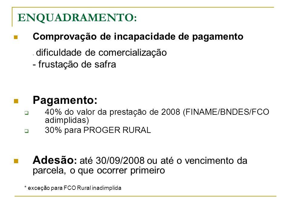 BNDES/FINAME (MT e RS) Pagamento de 40% da parcela 2008 Consolidação do saldo devedor Prorrogar por até mais 5 anos BNDES FINAME (demais estados) Pagamento de 40% da parcela 2008 Consolidação do saldo devedor Prorrogar por até mais 3 anos