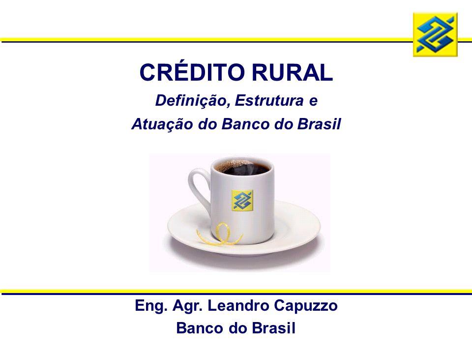 CRÉDITO RURAL Definição, Estrutura e Atuação do Banco do Brasil Eng. Agr. Leandro Capuzzo Banco do Brasil