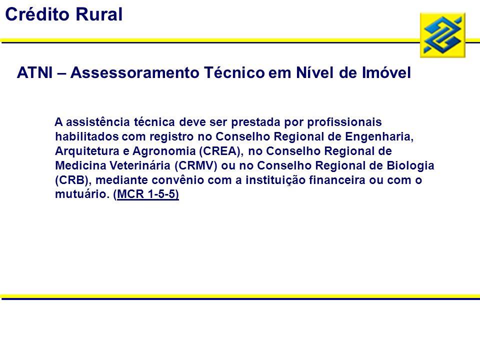 A assistência técnica deve ser prestada por profissionais habilitados com registro no Conselho Regional de Engenharia, Arquitetura e Agronomia (CREA),