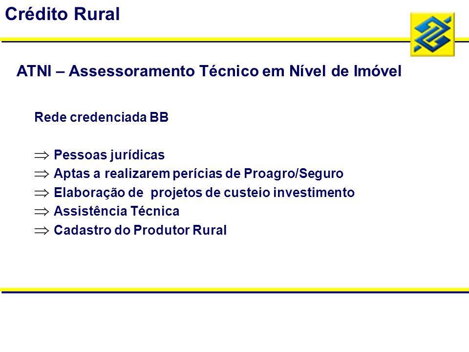 Rede credenciada BB Pessoas jurídicas Aptas a realizarem perícias de Proagro/Seguro Elaboração de projetos de custeio investimento Assistência Técnica