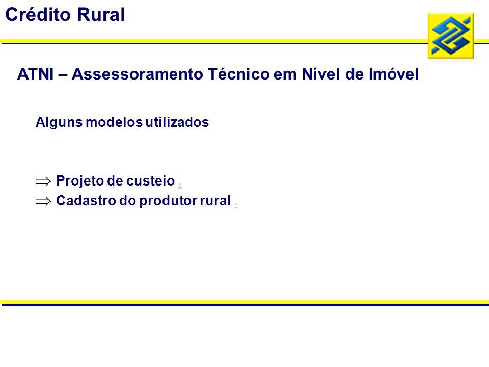 Alguns modelos utilizados Projeto de custeio.. Cadastro do produtor rural.. Crédito Rural ATNI – Assessoramento Técnico em Nível de Imóvel