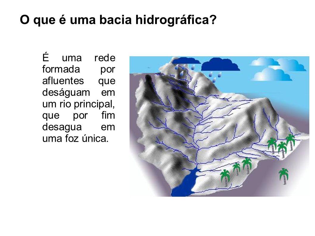 O que é uma bacia hidrográfica? É uma rede formada por afluentes que deságuam em um rio principal, que por fim desagua em uma foz única.
