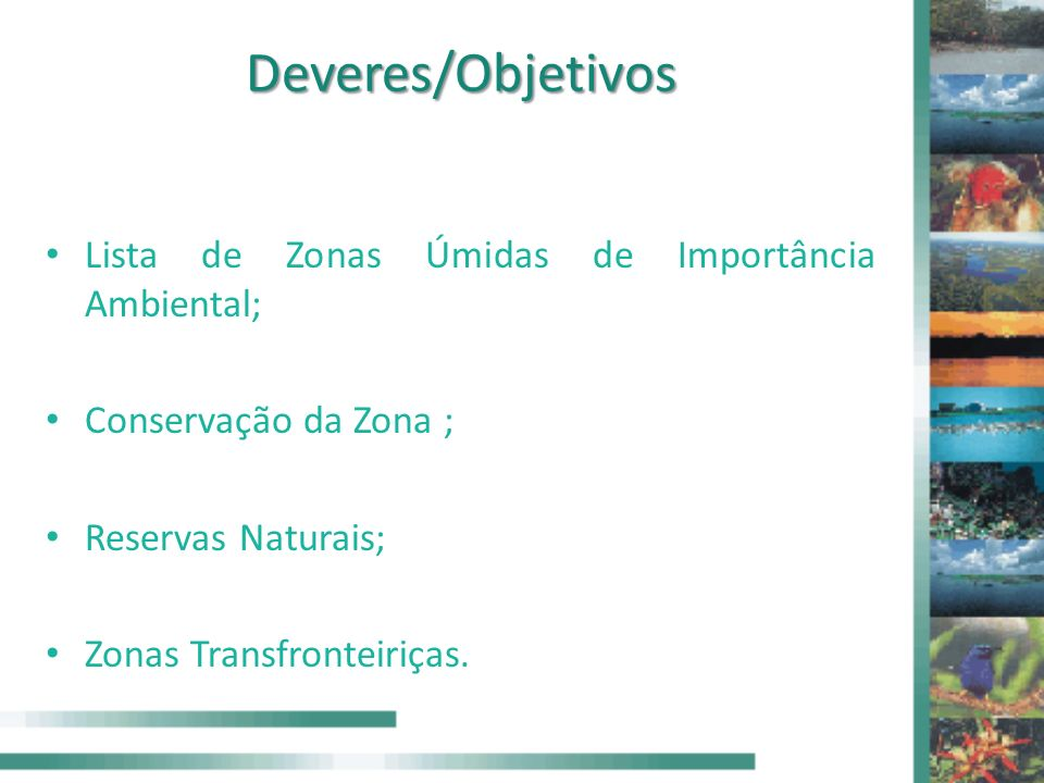 Deveres/Objetivos Lista de Zonas Úmidas de Importância Ambiental; Conservação da Zona ; Reservas Naturais; Zonas Transfronteiriças.