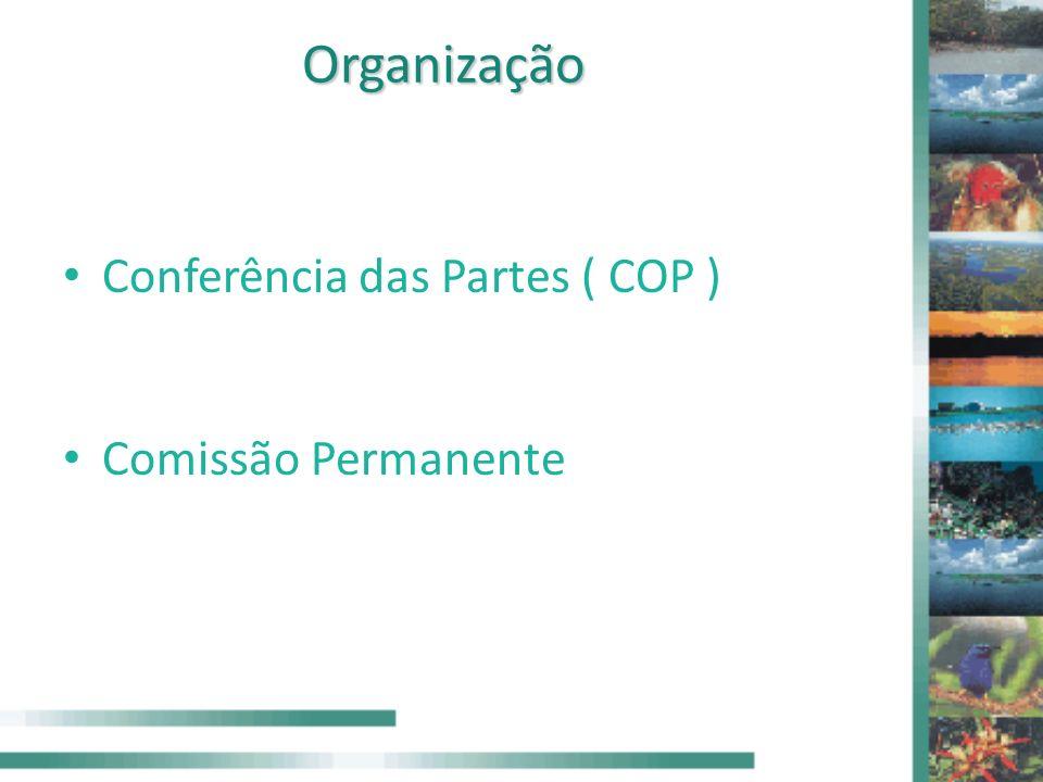 Organização Conferência das Partes ( COP ) Comissão Permanente
