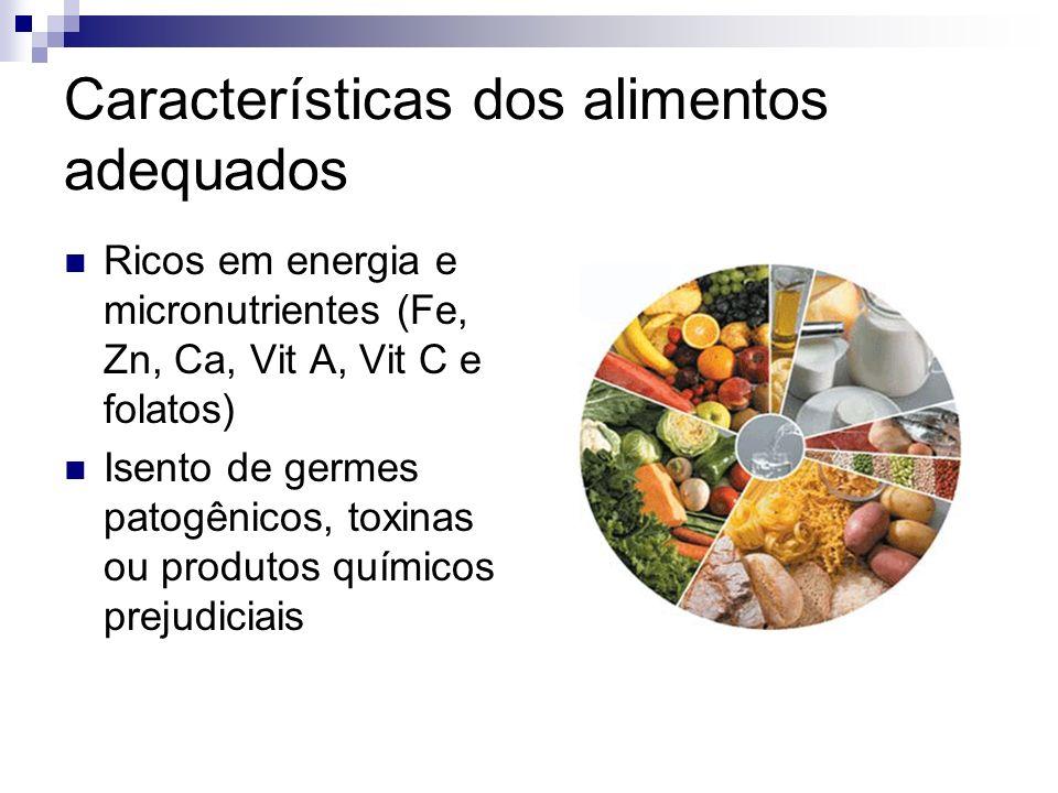 Características dos alimentos adequados Ricos em energia e micronutrientes (Fe, Zn, Ca, Vit A, Vit C e folatos) Isento de germes patogênicos, toxinas