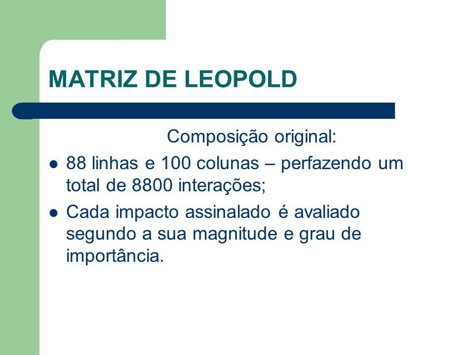 MATRIZ DE LEOPOLD Composição original: 88 linhas e 100 colunas – perfazendo um total de 8800 interações; Cada impacto assinalado é avaliado segundo a