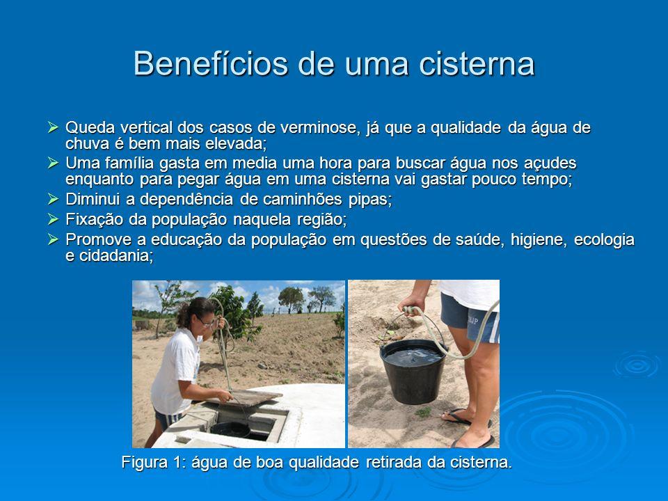 Benefícios de uma cisterna Queda vertical dos casos de verminose, já que a qualidade da água de chuva é bem mais elevada; Queda vertical dos casos de