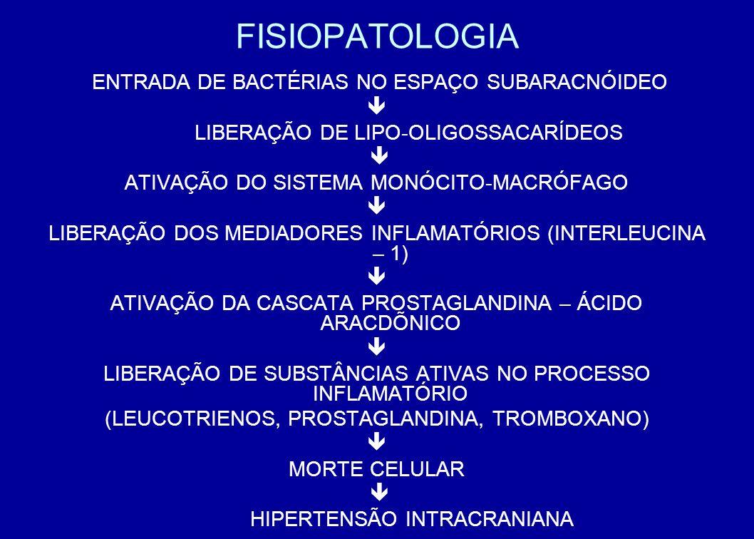 FISIOPATOLOGIA ENTRADA DE BACTÉRIAS NO ESPAÇO SUBARACNÓIDEO LIBERAÇÃO DE LIPO-OLIGOSSACARÍDEOS ATIVAÇÃO DO SISTEMA MONÓCITO-MACRÓFAGO LIBERAÇÃO DOS ME
