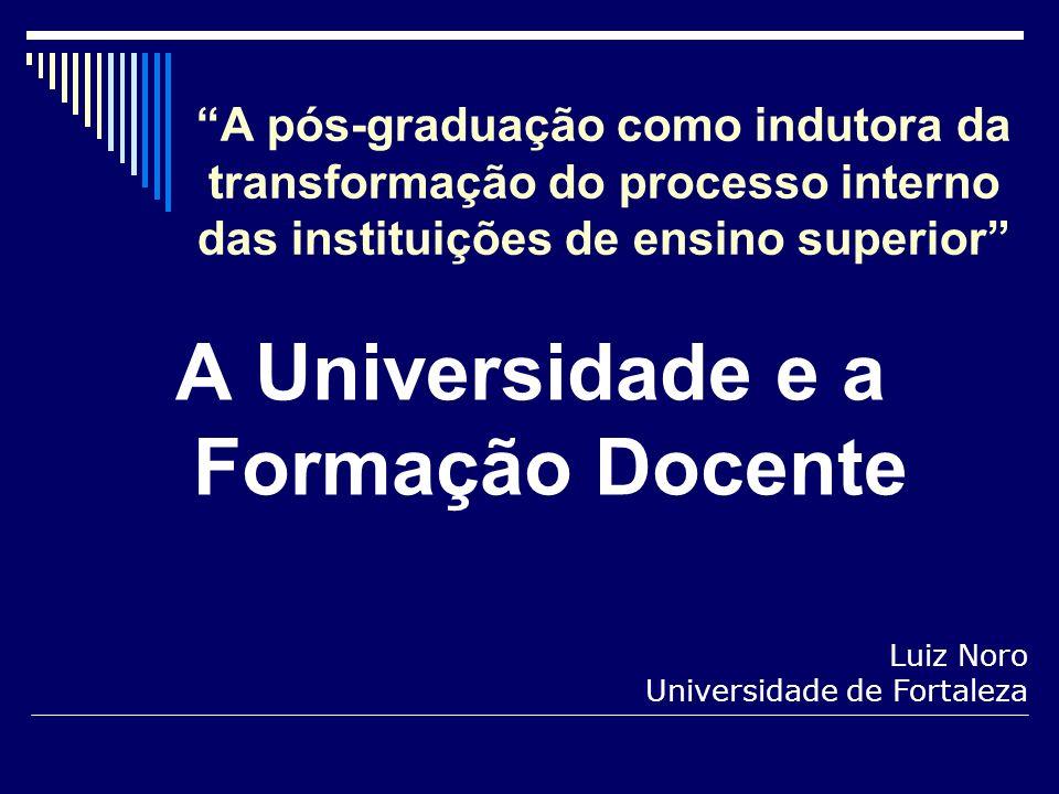 A pós-graduação como indutora da transformação do processo interno das instituições de ensino superior A Universidade e a Formação Docente Luiz Noro U