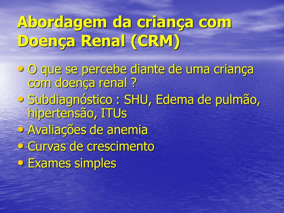 Abordagem da criança com Doença Renal (CRM) O que se percebe diante de uma criança com doença renal ? O que se percebe diante de uma criança com doenç
