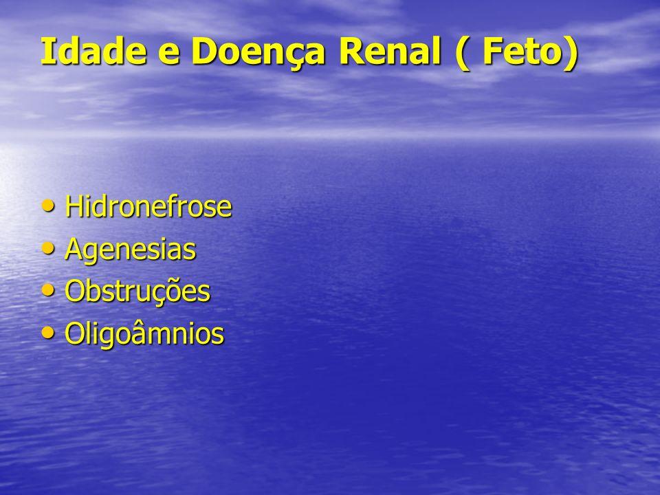 Idade e Doença Renal (Rns) Dificilmente se detecta uma IR ao nascimento Dificilmente se detecta uma IR ao nascimento Síndrome nefrótica congênita : Rns edemaciados e alta relação placenta/peso corpóreo Síndrome nefrótica congênita : Rns edemaciados e alta relação placenta/peso corpóreo Rins policísticos Rins policísticos Alterações urológicas Alterações urológicas Imaturidade glomerular e tubular de pretermos e predisposições Imaturidade glomerular e tubular de pretermos e predisposições Trombose de veia renal Trombose de veia renal ITU ITU