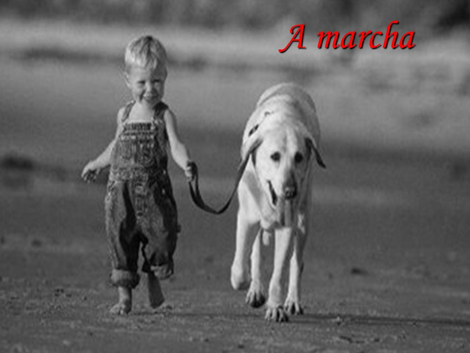 Marcha A marcha