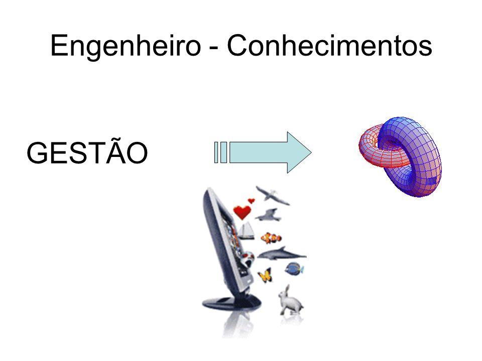 Engenheiro - Conhecimentos GESTÃO