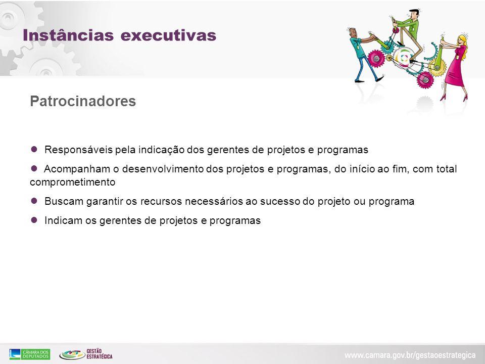 Instâncias executivas Patrocinadores Responsáveis pela indicação dos gerentes de projetos e programas Acompanham o desenvolvimento dos projetos e prog