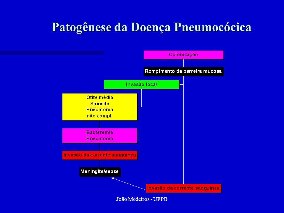 João Medeiros - UFPB Patogênese da Doença Pneumocócica